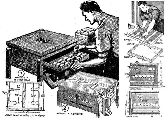 Cómo hacer una incubadora casera (1944)