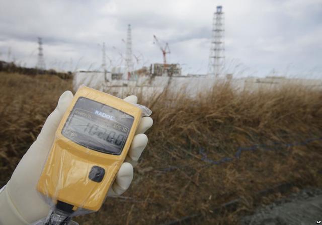 Fukushima: lecciones radiactivas