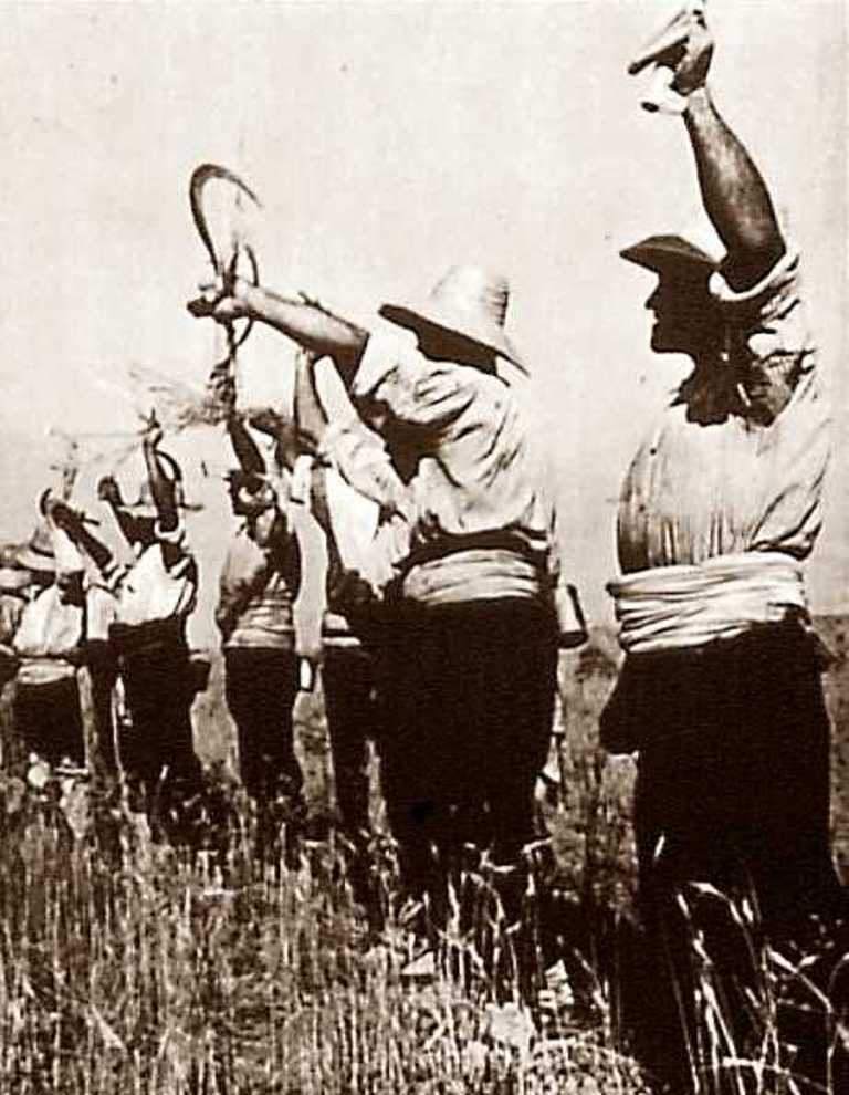 Jornaleros y pequeños agricultores, la base de la guerrilla andaluza.